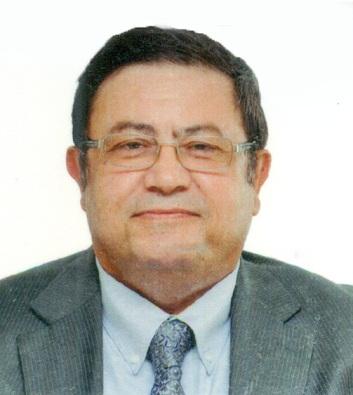 Alaa Abdelhamied Ali Ata